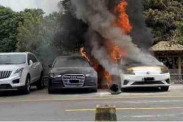 这个夏天新能源轿车又火了